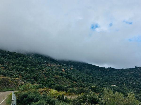 Mlha by se dala krájet